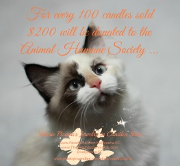 100 candles, $200 donated to Humane society
